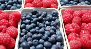 Wiśnie, porzeczki, borówki, maliny, agrest - ceny owoców na Broniszach