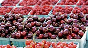 Węgry: bardzo wysokie ceny malin. Wiśnie też będą drogie?