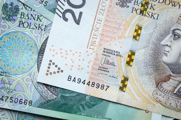 Senacka komisja za dalszym wsparciem finansowym polskich organizacji rolnych w UE