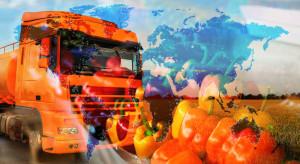 MRiRW: eksport żywności I-V br. wyniósł 14,5 mld euro