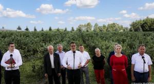 Premier odwiedził największą polską plantację borówki amerykańskiej