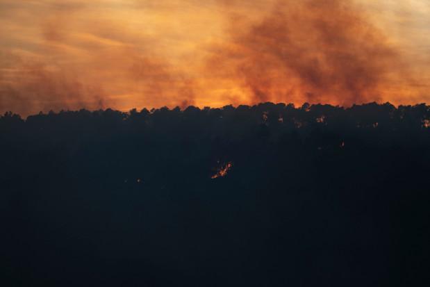 Hiszpania: Strażacy opanowali duży pożar lasów w Katalonii