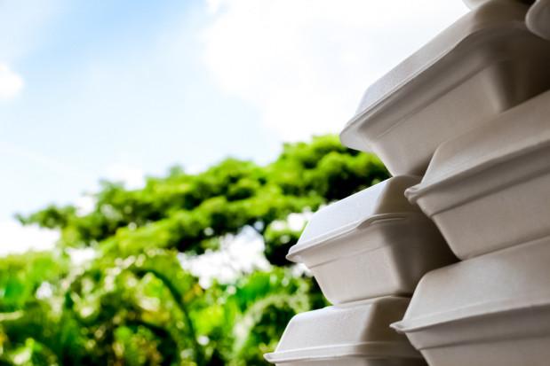 Badaczki z Politechniki Łódzkiej opracowały opakowania z odpadów roślinnych