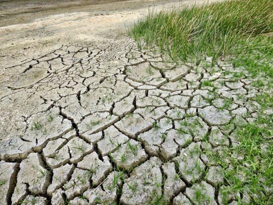 81 proc. Polaków obawia się zmian klimatu (badanie)