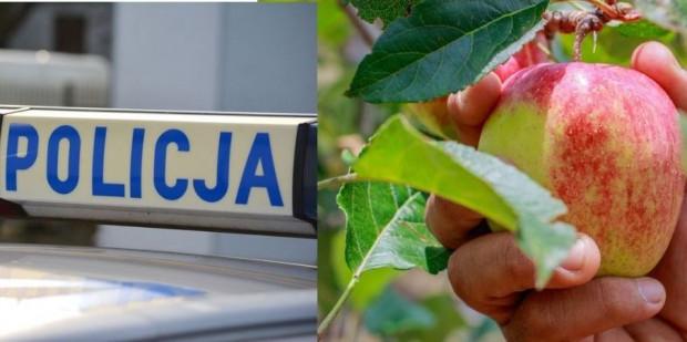 Wielkopolskie: Śmiertelny wypadek 21-latka podczas zbioru owoców