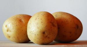 Nowość w Szwecji: Zamiennik mleka z ziemniaków