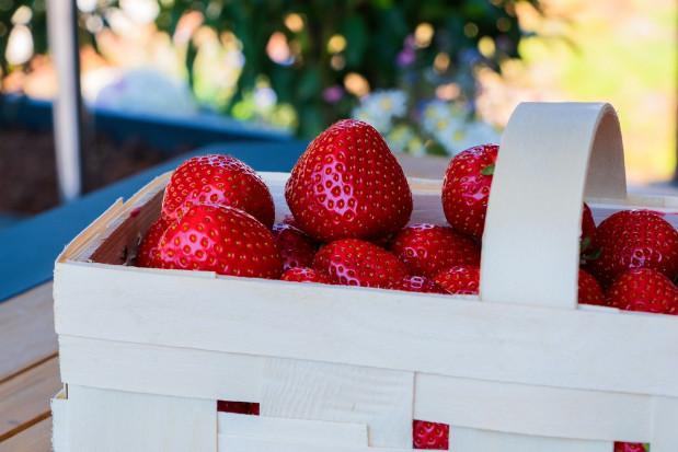 Truskawka - najczęściej jedzony owoc w czerwcu i lipcu