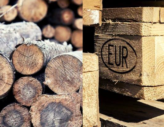 MKiŚ: wzrost cen średnich drewna w Polsce nie jest silny