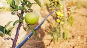 Modernizacja gospodarstw- nabór wniosków do 19 sierpnia 2021 r.