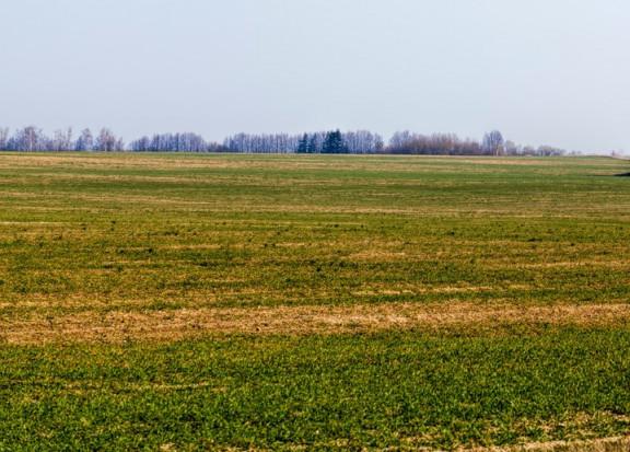 GUS: w ciągu ostatnich 10 lat w Polsce zniknęły 192 tys. gospodarstw