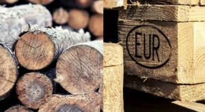 Lasy Państwowe: nie mamy wpływu na to, co się dzieje z drewnem sprzedanym na rynku krajowym