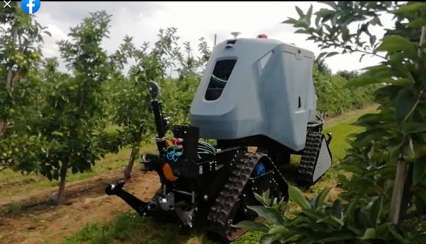 Agribot- polski robot rozpoczął próby w gospodarstwie sadowniczym