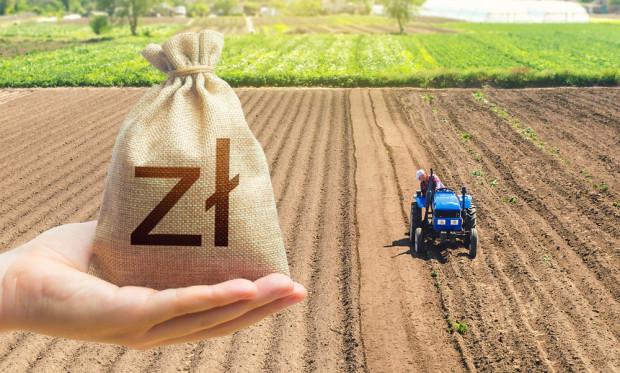 Plantatorzy są zmuszeni do sprzedawania warzyw i owoców za grosze