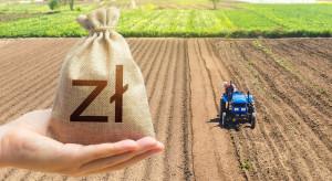W sklepie ceny wysokie, a rolnikowi płaci się grosze za warzywa i owoce