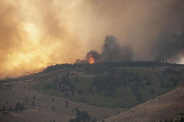 W Hiszpanii szaleje 60 pożarów lasów