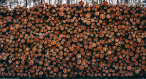 W Niemczech zabrakło drewna; rynek drenują Amerykanie i Chińczycy