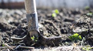 Lubuskie: Rolnik natknął się na skarb związany z kulturą unietycką