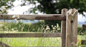 Podkarpackie: Samorząd realizuje program dla terenów wiejskich