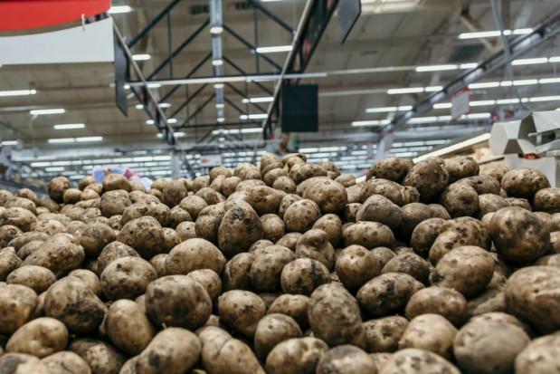 GUS: w lipcu wzrost cen produktów rolnych o ponad 16 proc. r/r