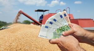 GPW: Towarowa Giełda energii powołała Radę Rynku Rolnego