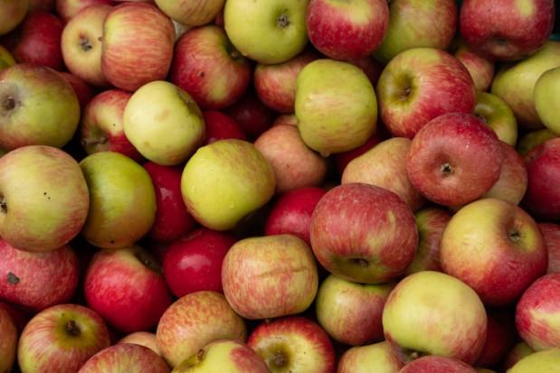 Rosną ceny wczesnych jabłek w Mołdawii