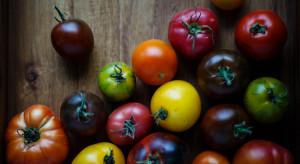 Pomidory najczęściej spożywanym warzywem w sierpniu