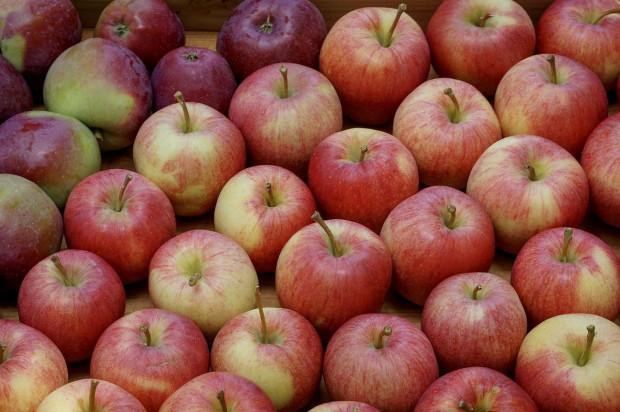 Indie kluczowym rynkiem dla jabłek z Fruit-Group