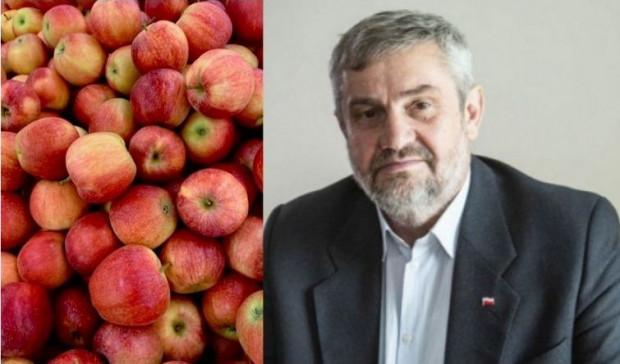 Ardanowski: optymalna cena kg jabłek w skupie powinna wynosić 35-40 gr