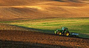 KOWR: średni czynsz dzierżawny w I półroczu br. wyniósł 15,1 dt/ha