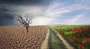 Zmiany klimatu: W Polsce problemem będą nawalne deszcze i okresy suszy (video)