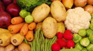 Polska jednym z liderów w produkcji warzyw