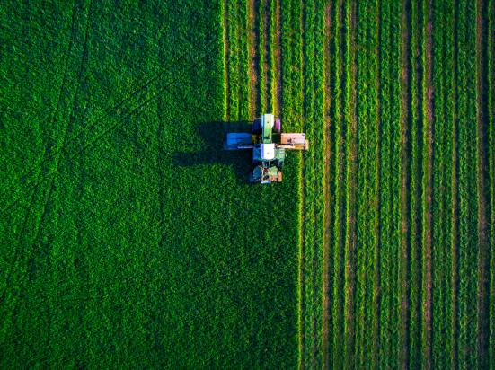 Rosja i Białoruś opracują wspólną politykę rolną
