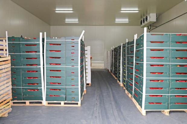 MRiRW: W okresie I-VII br. wartość eksportu żywności osiągnęła 20,5 mld zł