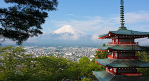 Japonia: Trzy grzyby sprzedano na aukcji za 7,6 tys. dolarów