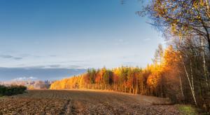Sejm za utrzymaniem bezprzetargowego przekazywania gruntów pod OZE przez KOWR