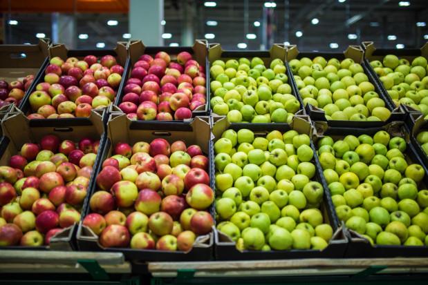 Białoruś: Ceny jabłek utrzymują się na niezwykle wysokim poziomie