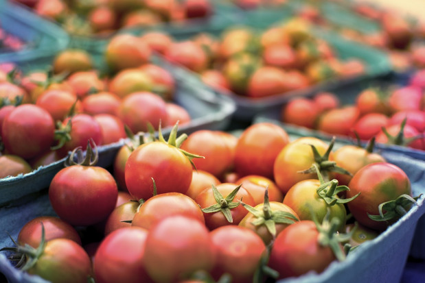 Badania potwierdzają: unijna strategia spowoduje spadek produkcji żywności w UE
