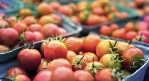 Strategia od pola do stołu spowoduje spadek produkcji żywności w UE