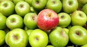 Polskie jabłka muszą konkurować z tureckimi