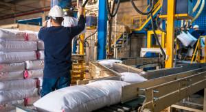Ograniczenia produkcji nawozów w kolejnych zakładach w Europie