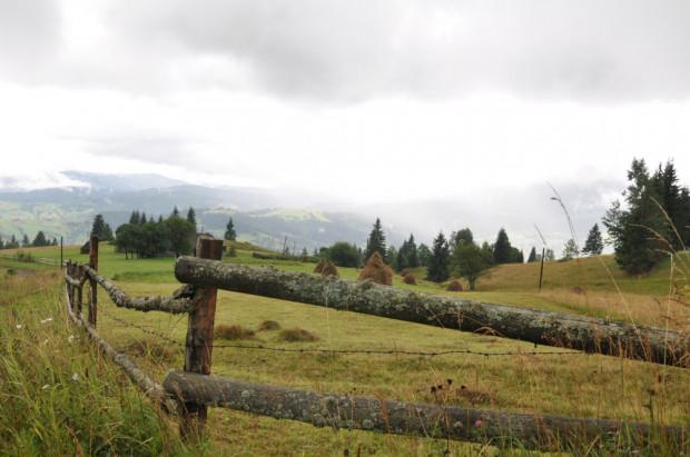 MRiRW: rolnictwo na terenach górskich powinno się opłacać