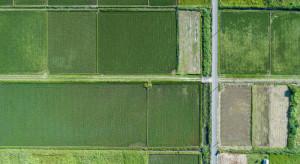 KOWR sprzedał w I półroczu br. ok. 650 ha pod inwestycje