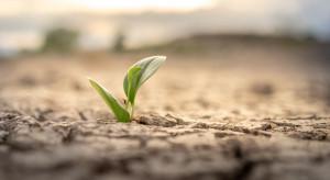 Światowa Organizacja Meteorologiczna ostrzega przed kryzysem wodnym