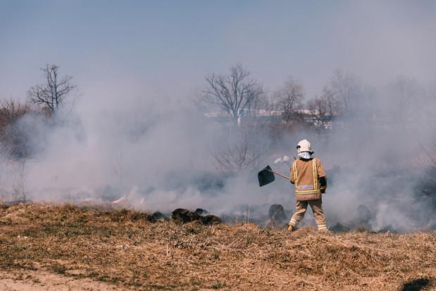 Ponad 22 tys. interwencji strażaków w pożarach w lasach i na łąkach