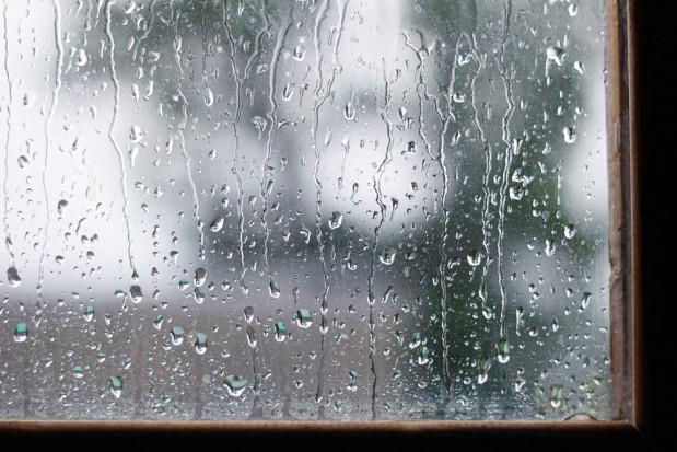 W czwartek temperatury do 16 stopni. Na zachodzie możliwe deszcze