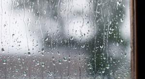 Pogoda na czwartek: Temperatura do 16 stopni. Możliwe deszcze na zachodzie