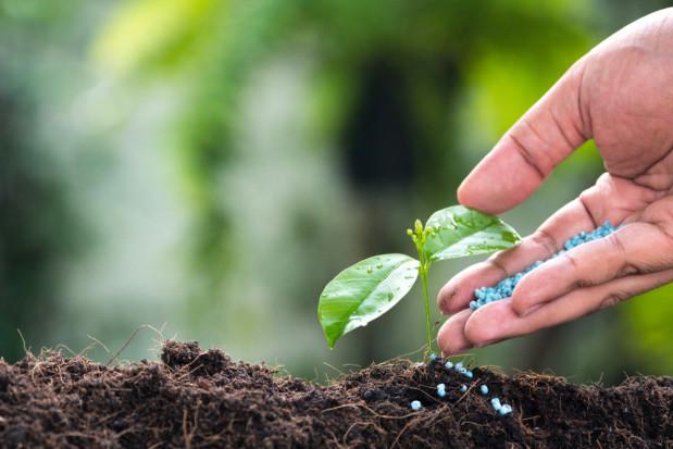 Grupa Azoty o cenach nawozów: Nie będzie taniej. Sytuacja jest bezprecedensowa