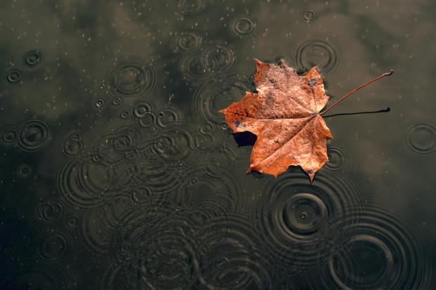 Synoptyk IGMW: we wtorek deszcz w całym kraju