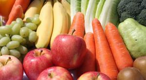 Jakie normy dla dostawców owoców i warzyw do Lidla?