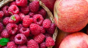 Rynek owoców: Niskie ceny jabłek, rekordowo wysokie malin
